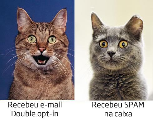 Uma forma de evitar o envio de spam é a inserção do Double opt-in no momento do cadastro